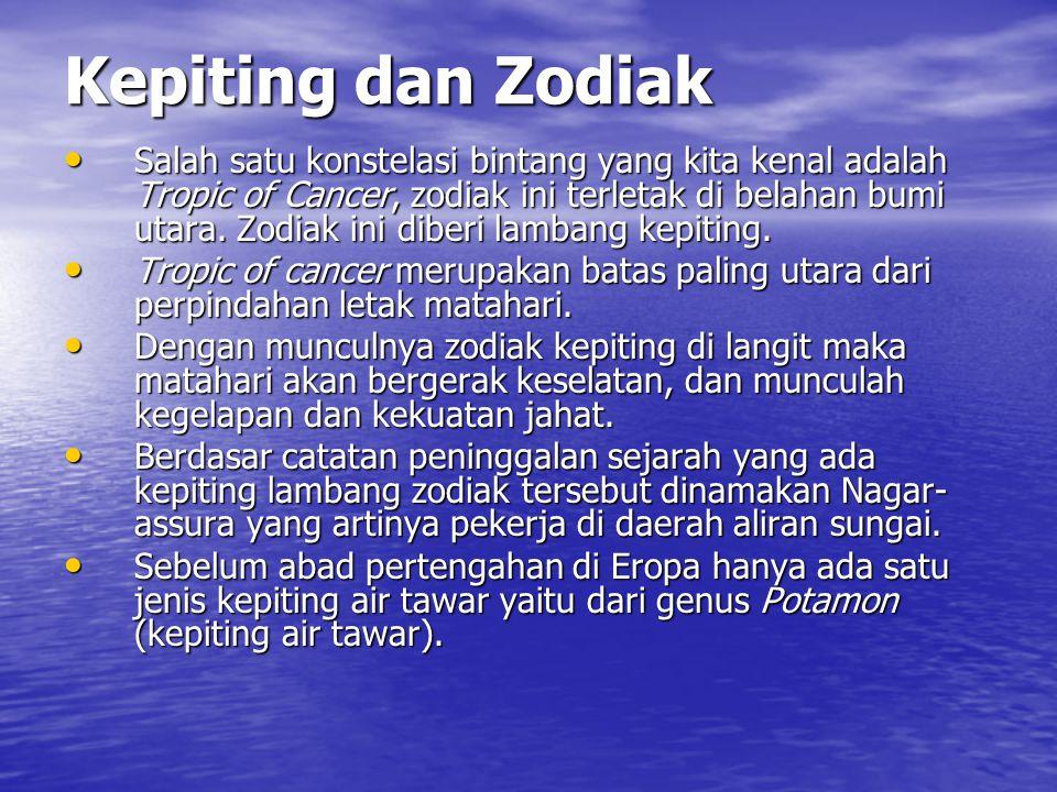 Kepiting dan Zodiak