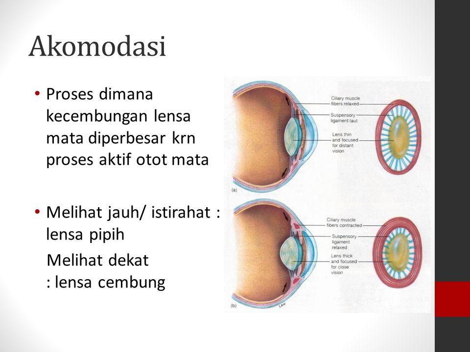 Akomodasi Proses dimana kecembungan lensa mata diperbesar krn proses aktif otot mata. Melihat jauh/ istirahat : lensa pipih.