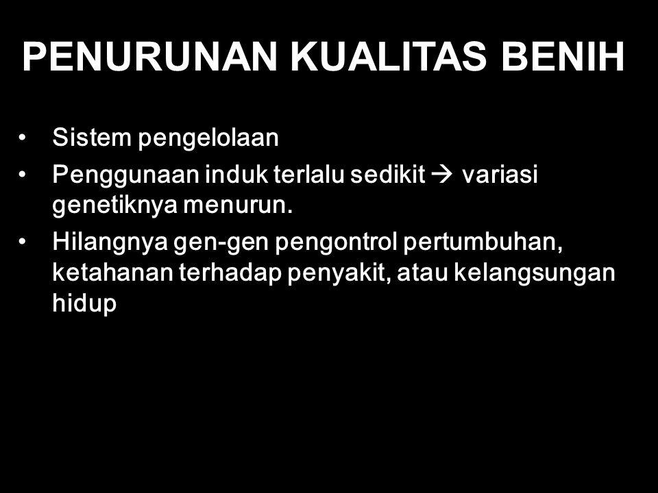PENURUNAN KUALITAS BENIH
