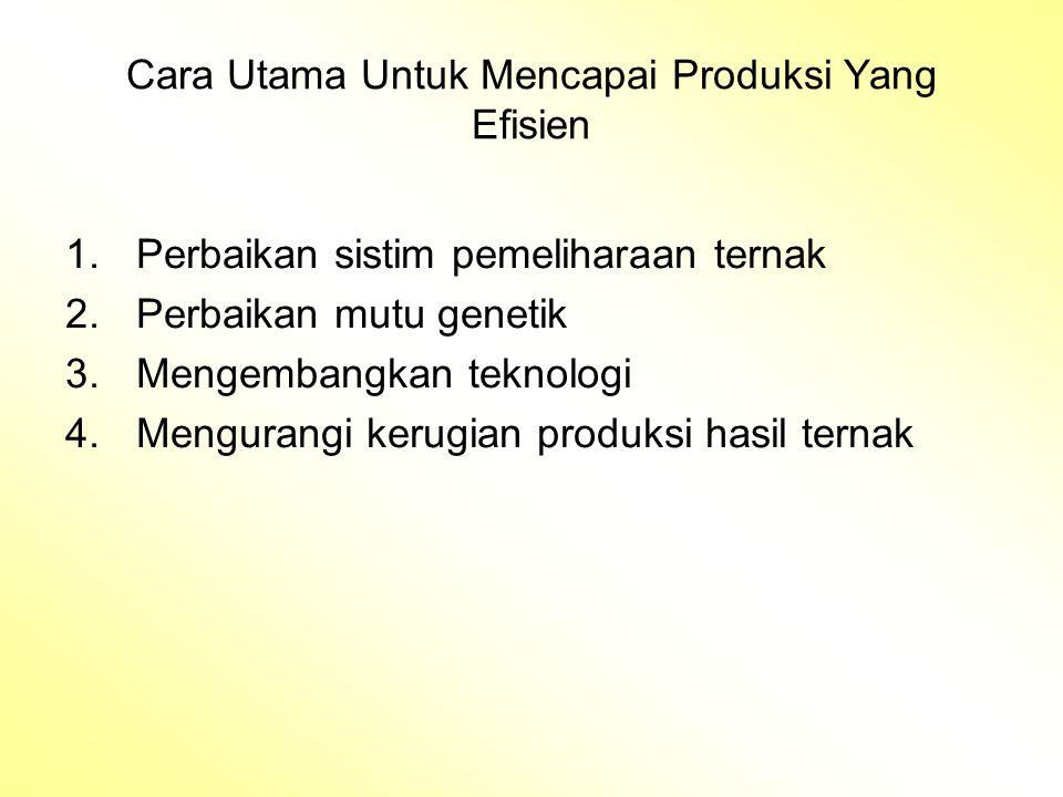 Cara Utama Untuk Mencapai Produksi Yang Efisien