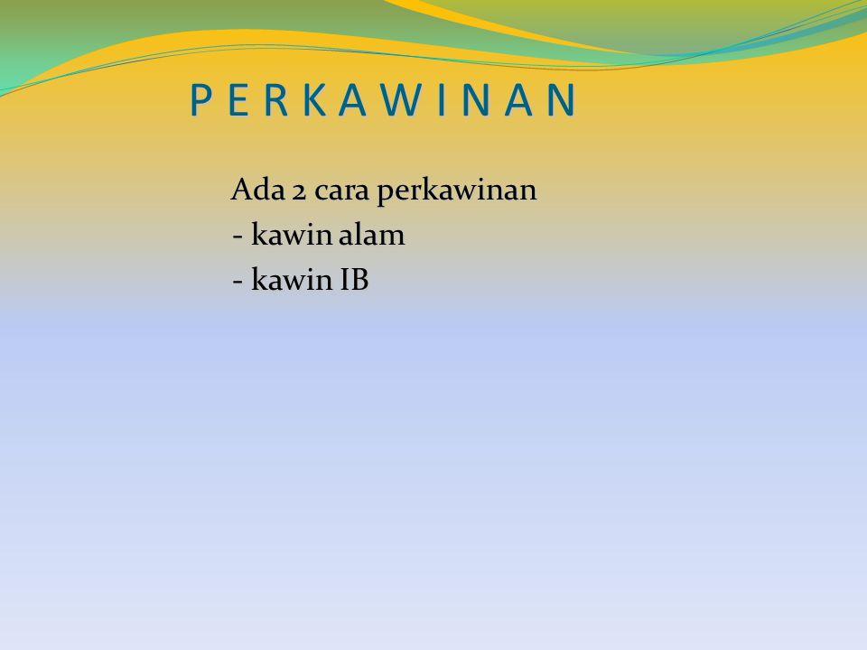 P E R K A W I N A N Ada 2 cara perkawinan - kawin alam - kawin IB