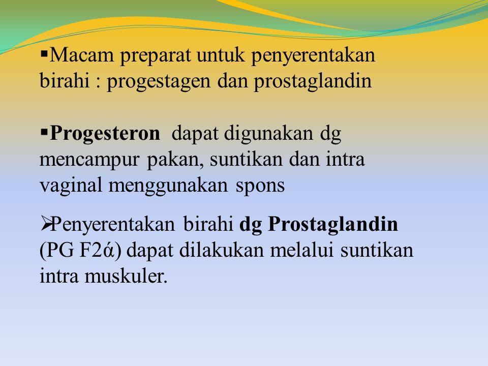 Macam preparat untuk penyerentakan birahi : progestagen dan prostaglandin