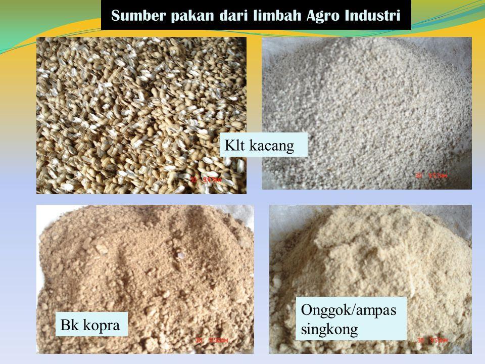 Sumber pakan dari limbah Agro Industri
