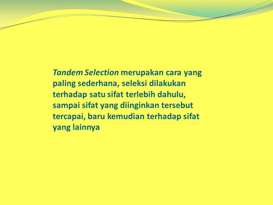 Tandem Selection merupakan cara yang paling sederhana, seleksi dilakukan terhadap satu sifat terlebih dahulu, sampai sifat yang diinginkan tersebut tercapai, baru kemudian terhadap sifat yang lainnya