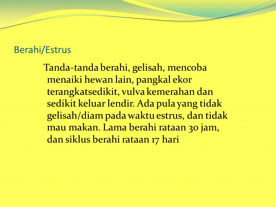 Berahi/Estrus