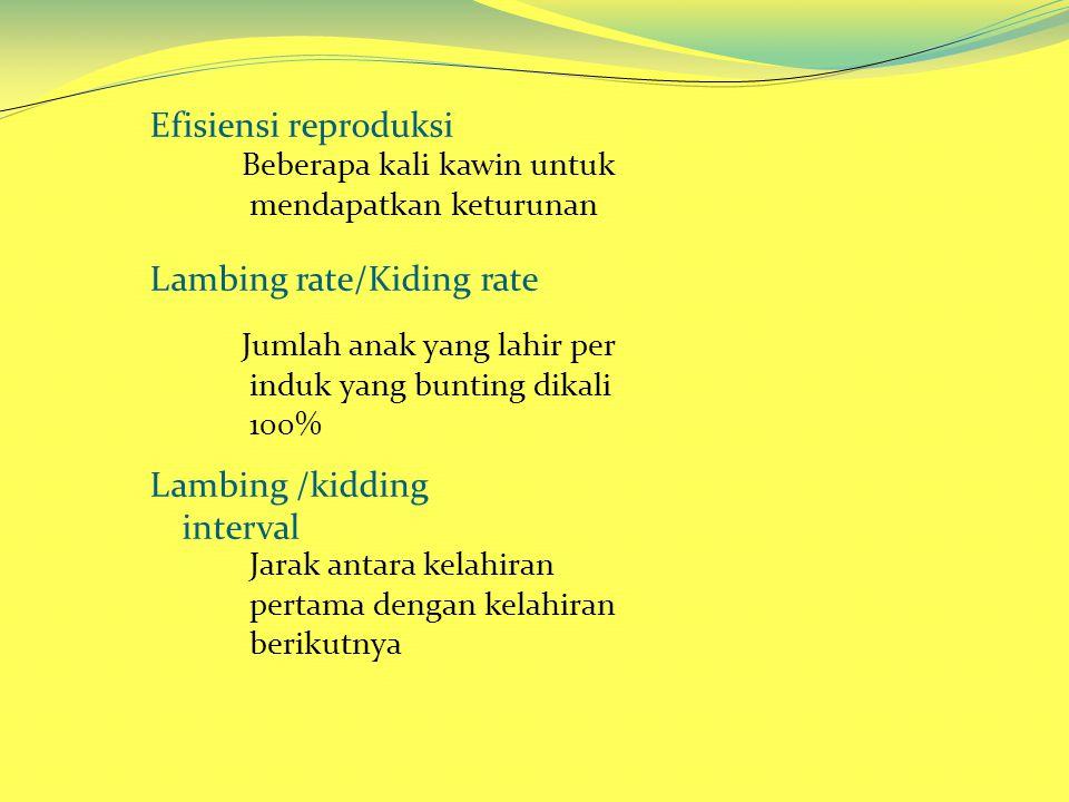 Lambing rate/Kiding rate