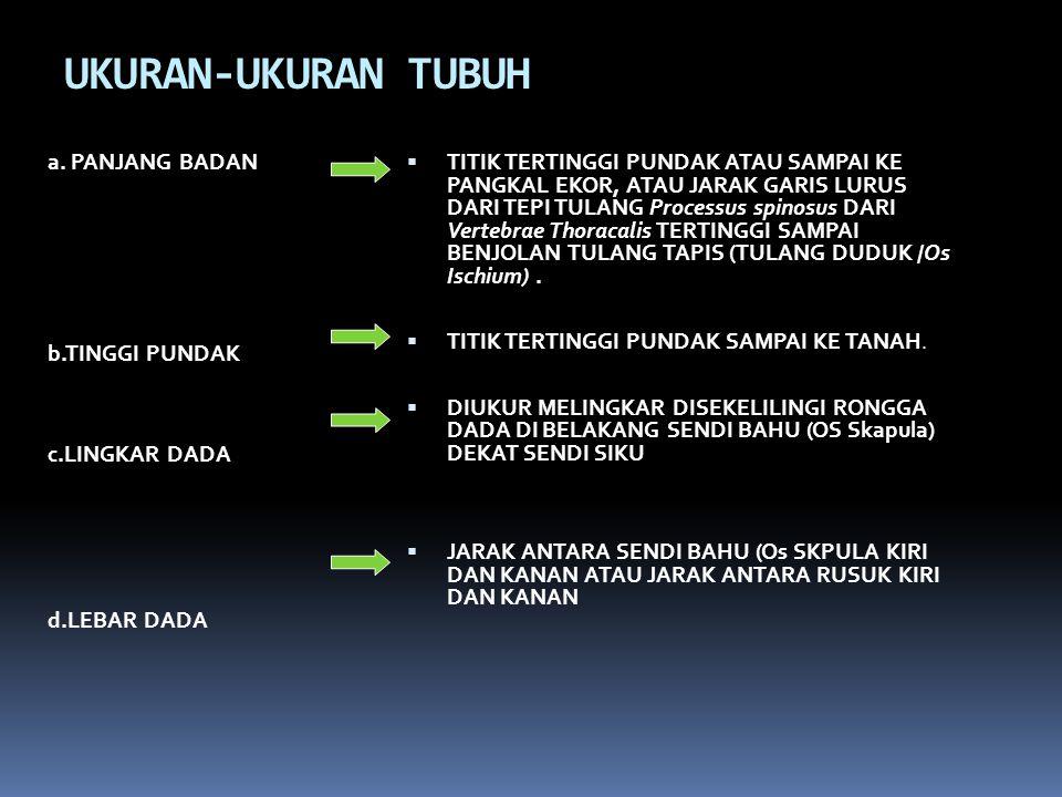 UKURAN-UKURAN TUBUH a. PANJANG BADAN b.TINGGI PUNDAK c.LINGKAR DADA d.LEBAR DADA
