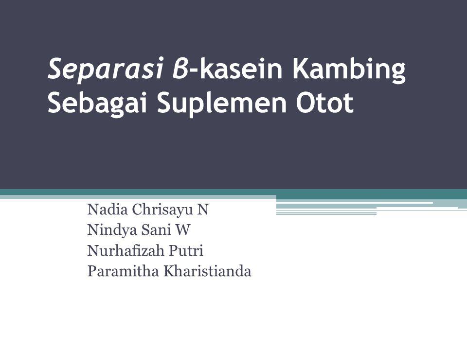 Separasi β-kasein Kambing Sebagai Suplemen Otot
