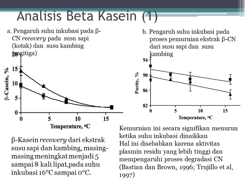 Analisis Beta Kasein (1)