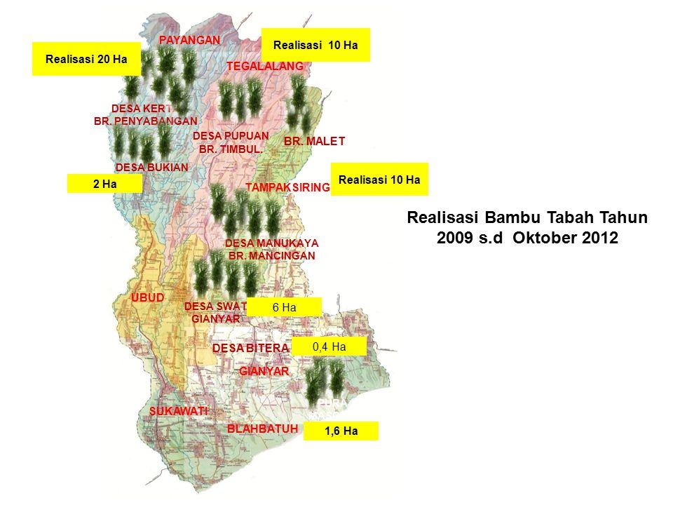 Realisasi Bambu Tabah Tahun 2009 s.d Oktober 2012