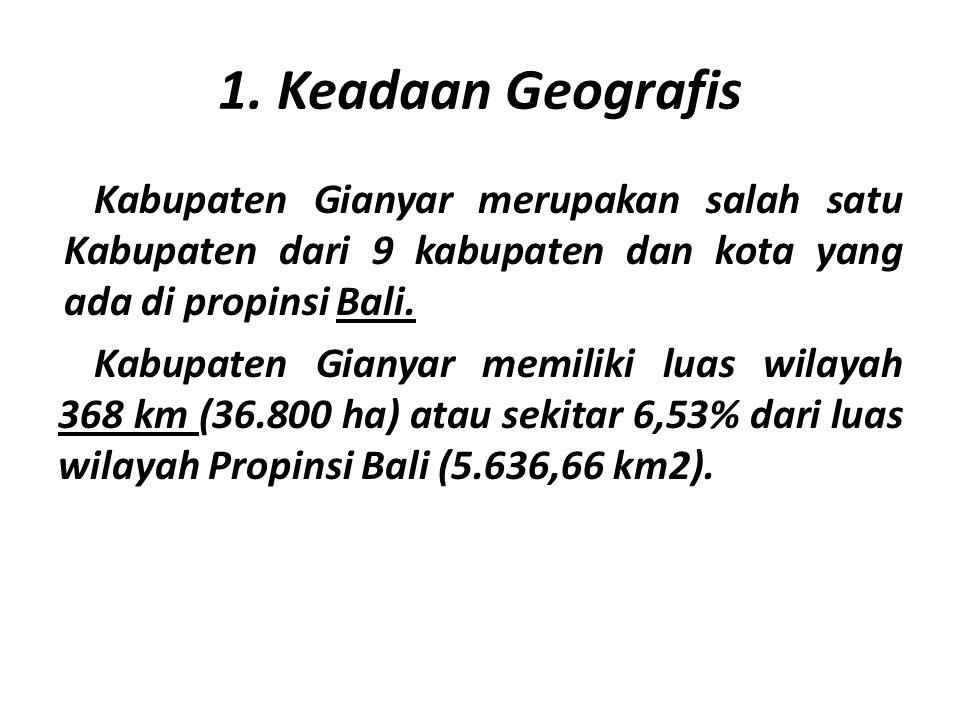 1. Keadaan Geografis