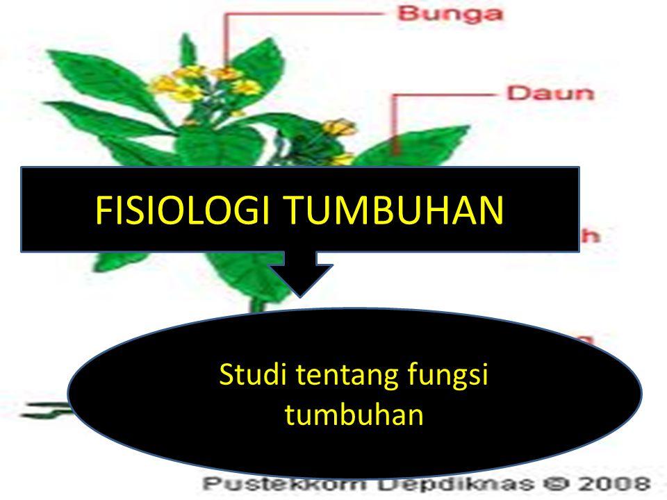 Studi tentang fungsi tumbuhan