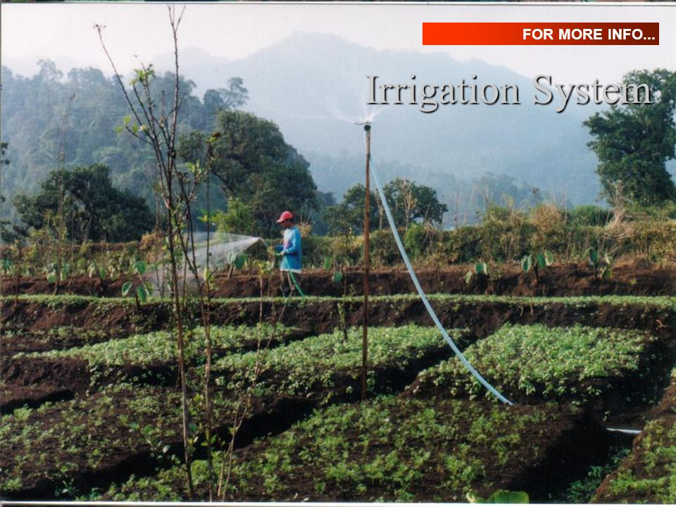 FOR MORE INFO... Irrigation System