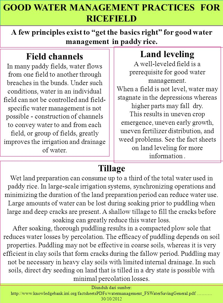 GOOD WATER MANAGEMENT PRACTICES FOR RICEFIELD