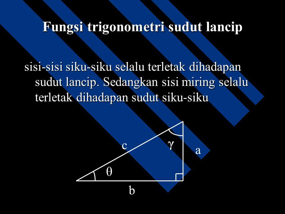 Fungsi trigonometri sudut lancip