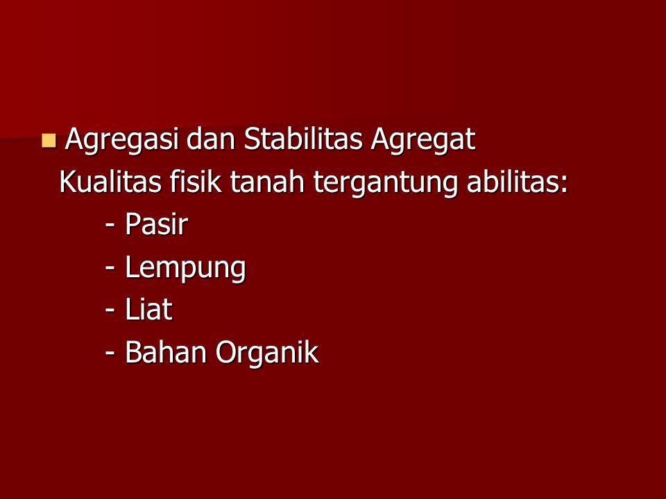 Agregasi dan Stabilitas Agregat