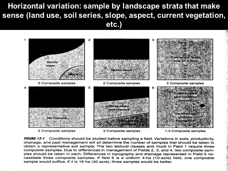 Horizontal variation: sample by landscape strata that make sense (land use, soil series, slope, aspect, current vegetation, etc.)
