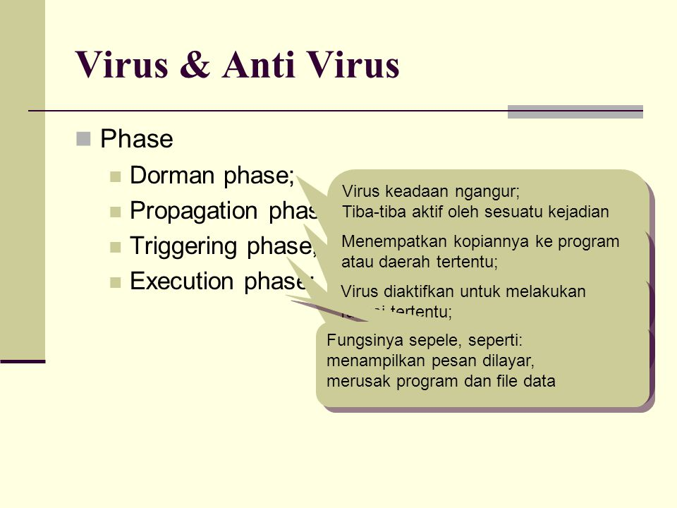 Virus & Anti Virus Phase Dorman phase; Propagation phase;
