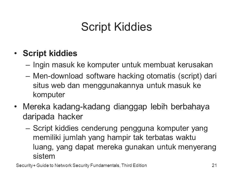Script Kiddies Script kiddies