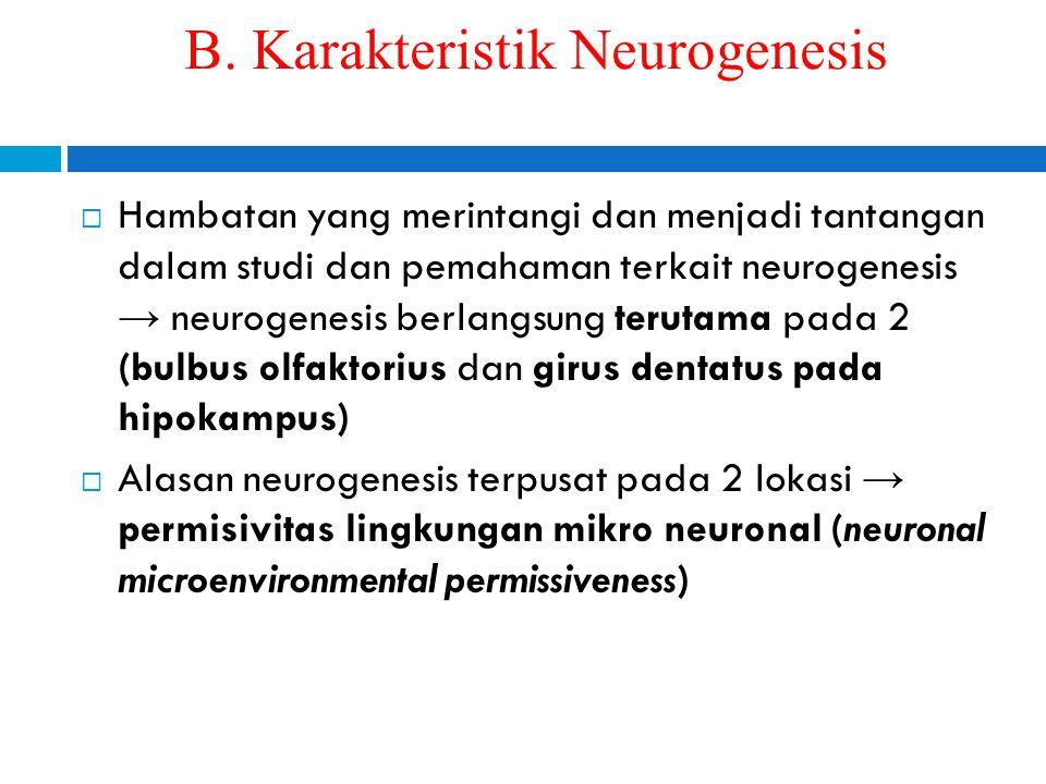 B. Karakteristik Neurogenesis