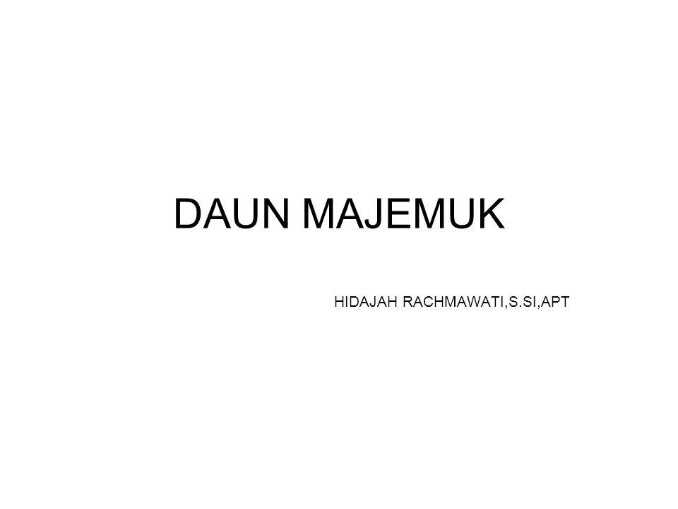 HIDAJAH RACHMAWATI,S.SI,APT