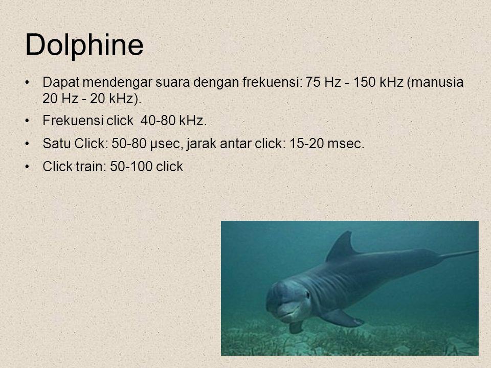 Dolphine Dapat mendengar suara dengan frekuensi: 75 Hz - 150 kHz (manusia 20 Hz - 20 kHz). Frekuensi click 40-80 kHz.