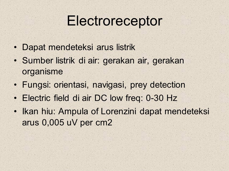 Electroreceptor Dapat mendeteksi arus listrik