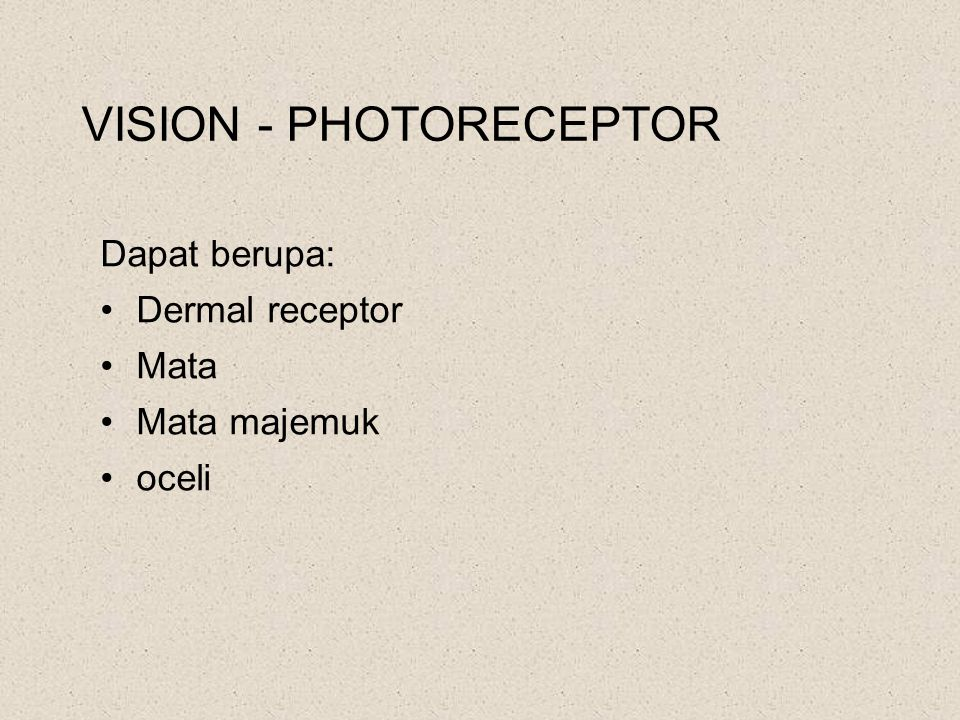 VISION - PHOTORECEPTOR