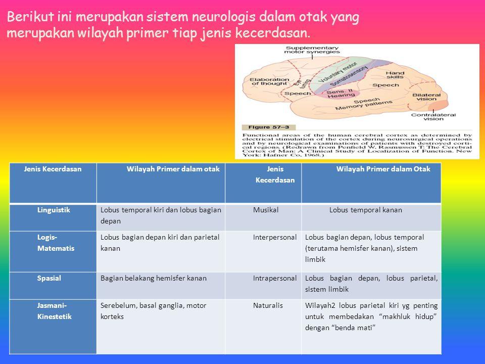 Wilayah Primer dalam otak Wilayah Primer dalam Otak