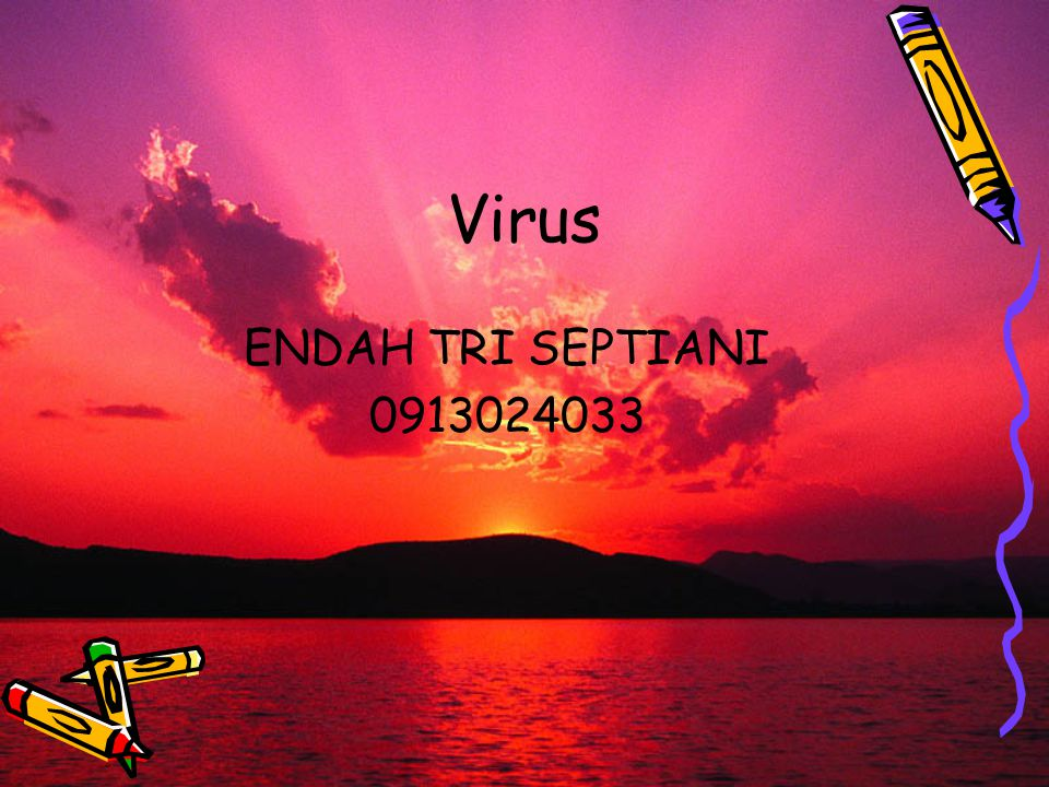 Virus ENDAH TRI SEPTIANI 0913024033