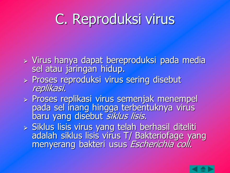 C. Reproduksi virus Virus hanya dapat bereproduksi pada media sel atau jaringan hidup. Proses reproduksi virus sering disebut replikasi.