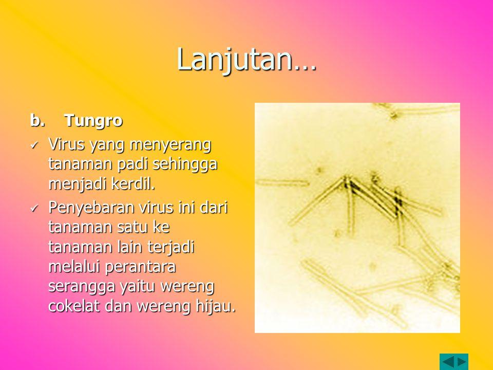 Lanjutan… b. Tungro. Virus yang menyerang tanaman padi sehingga menjadi kerdil.