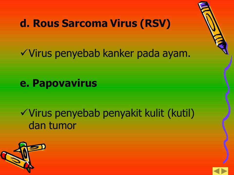 d. Rous Sarcoma Virus (RSV)