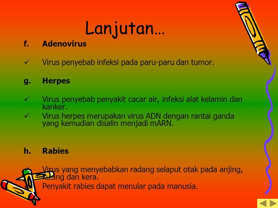 Lanjutan… Adenovirus Virus penyebab infeksi pada paru-paru dan tumor.