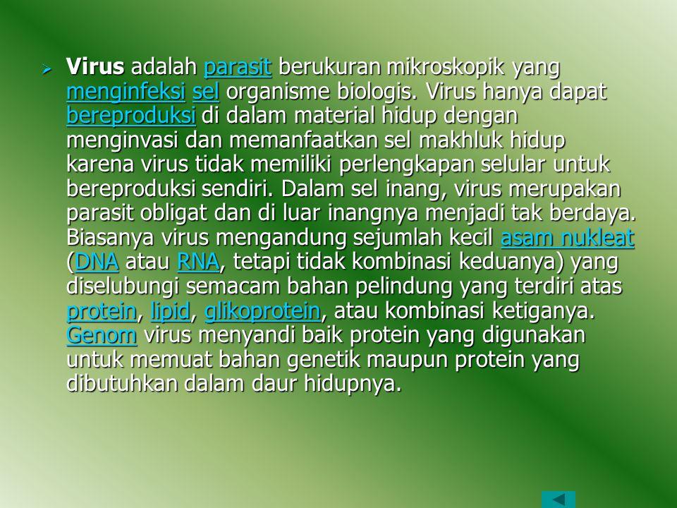 Virus adalah parasit berukuran mikroskopik yang menginfeksi sel organisme biologis.