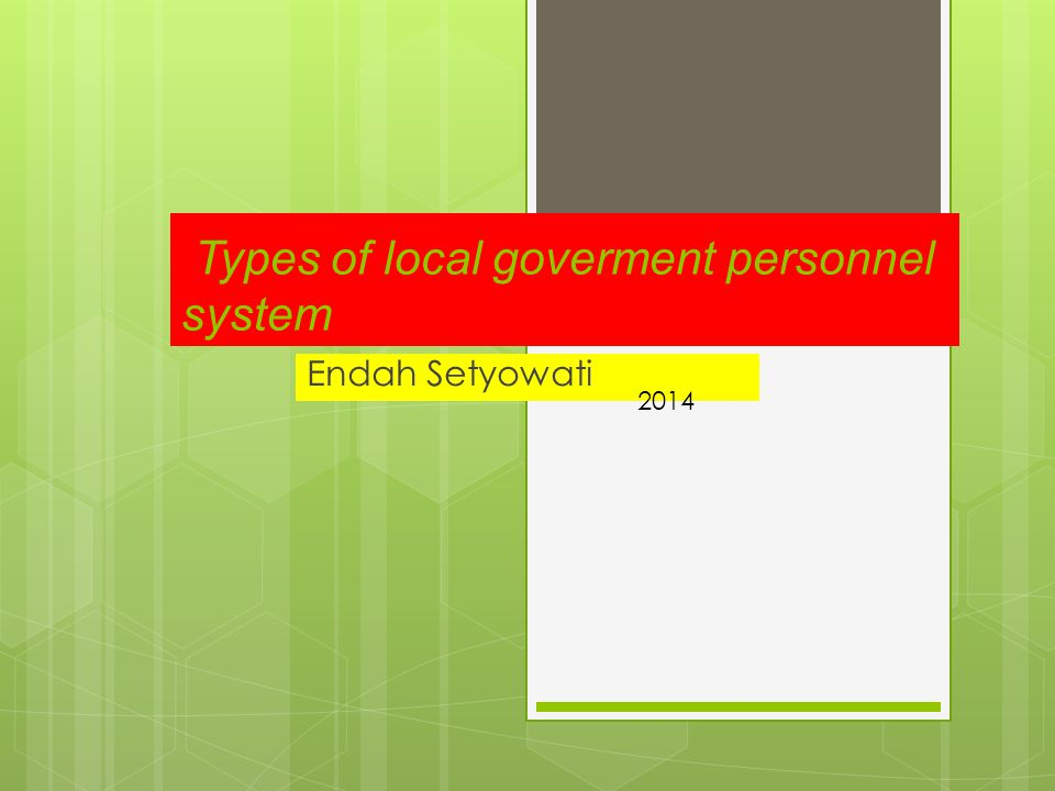 Types of local goverment personnel system
