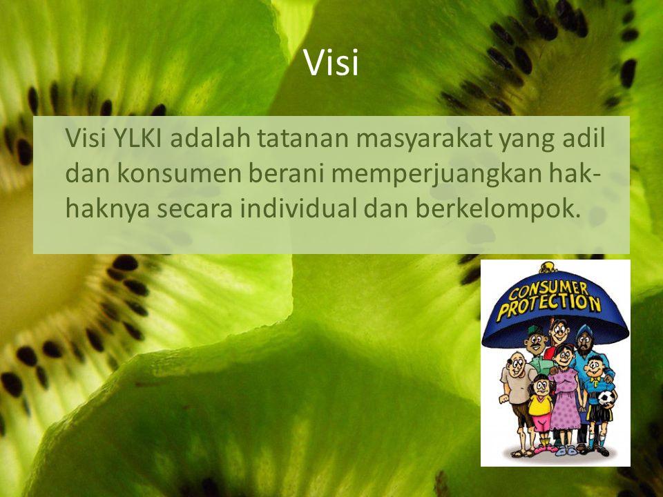 Visi Visi YLKI adalah tatanan masyarakat yang adil dan konsumen berani memperjuangkan hak-haknya secara individual dan berkelompok.