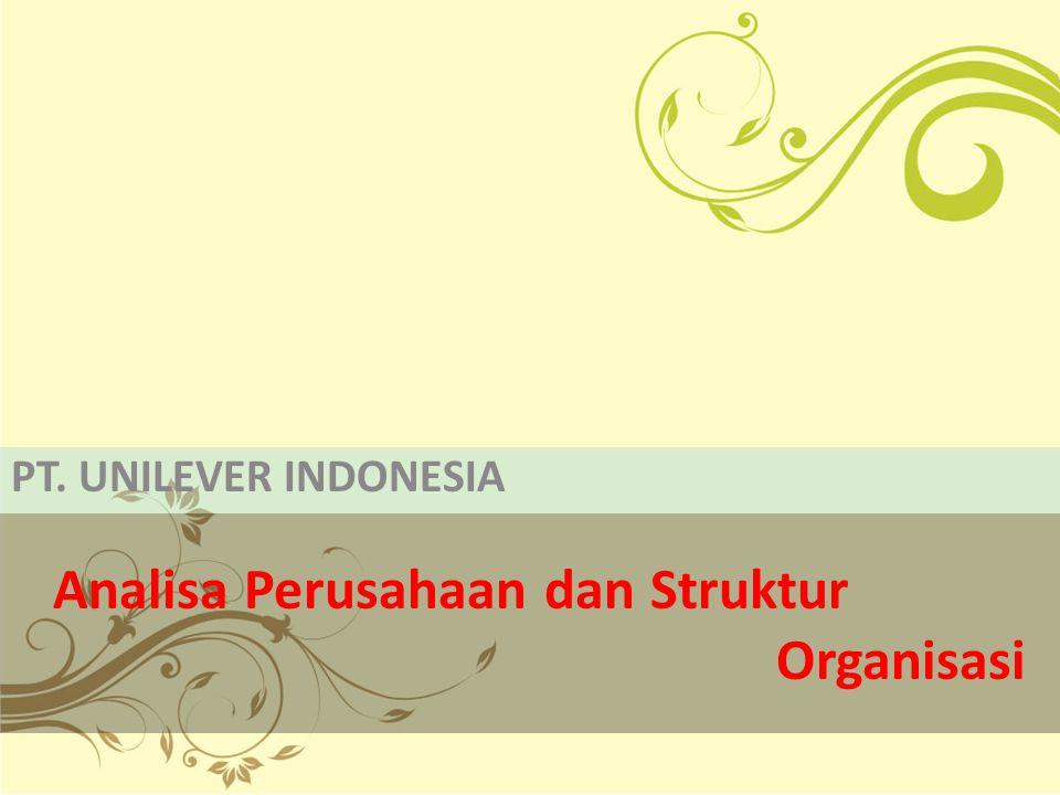 Analisa Perusahaan dan Struktur Organisasi