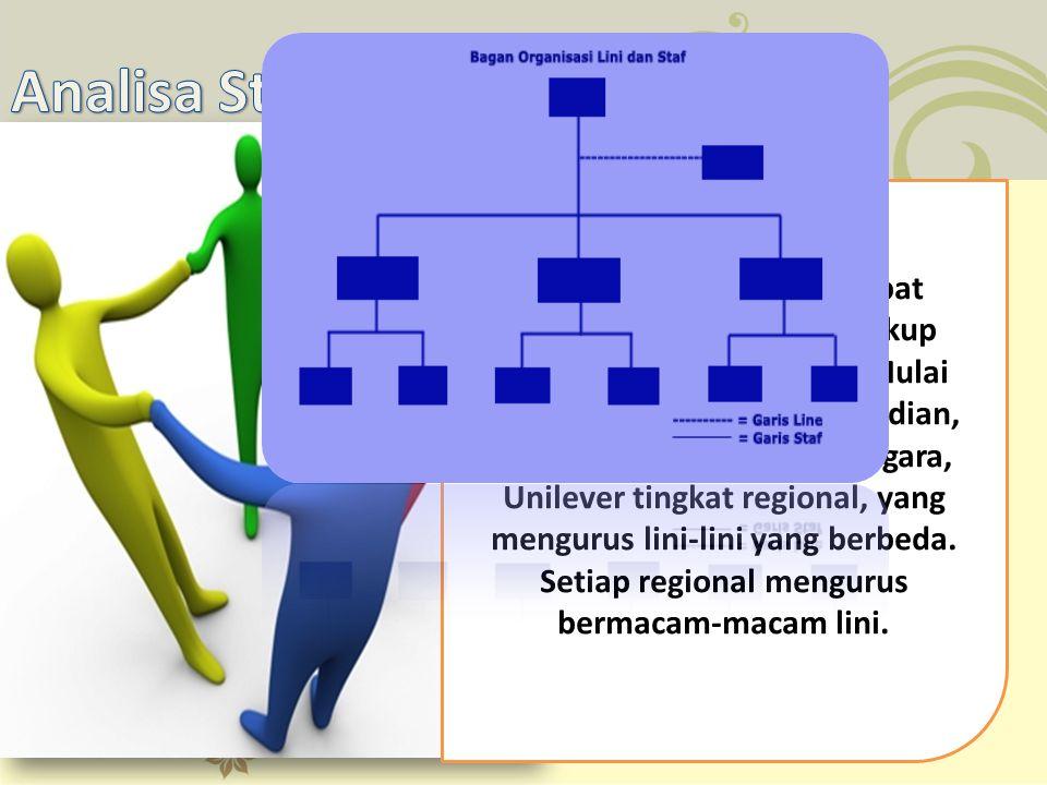 Analisa Struktur Organisasi