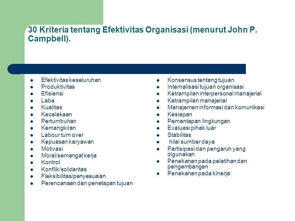 30 Kriteria tentang Efektivitas Organisasi (menurut John P. Campbell).