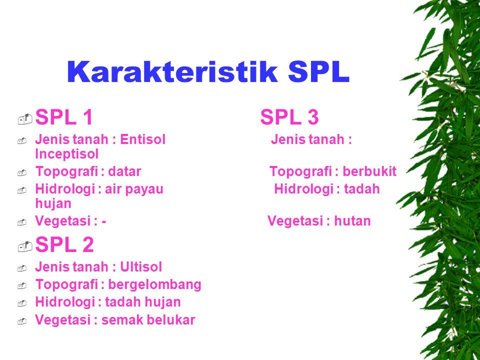 Karakteristik SPL SPL 1 SPL 3 SPL 2