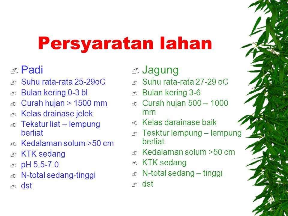 Persyaratan lahan Padi Jagung Suhu rata-rata 25-29oC