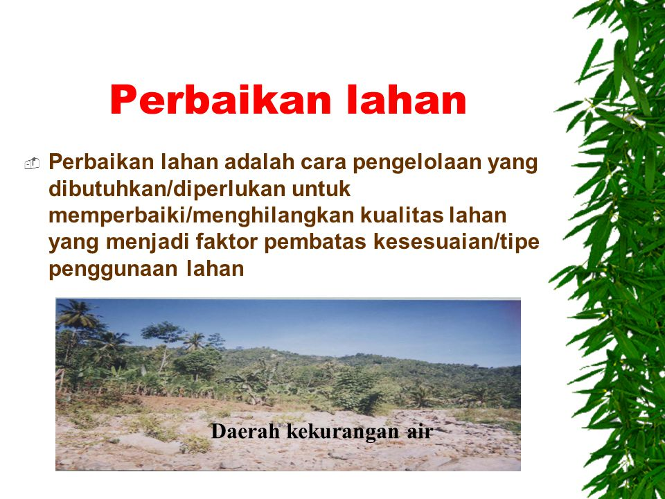 Perbaikan lahan