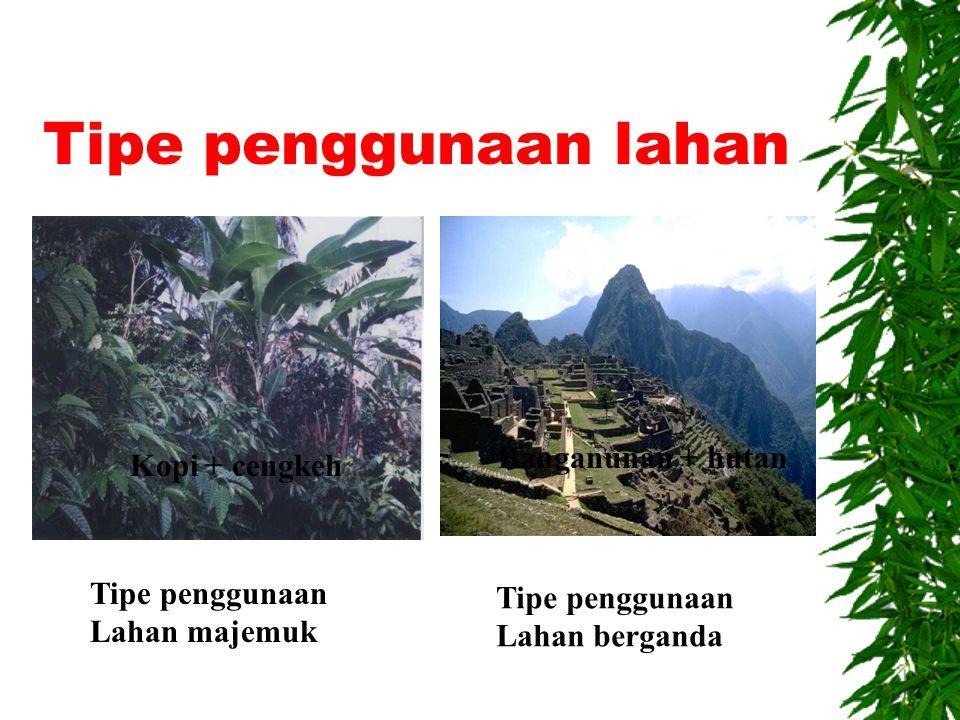 Tipe penggunaan lahan Banganunan + hutan Kopi + cengkeh