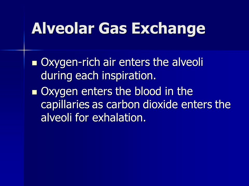 Alveolar Gas Exchange Oxygen-rich air enters the alveoli during each inspiration.