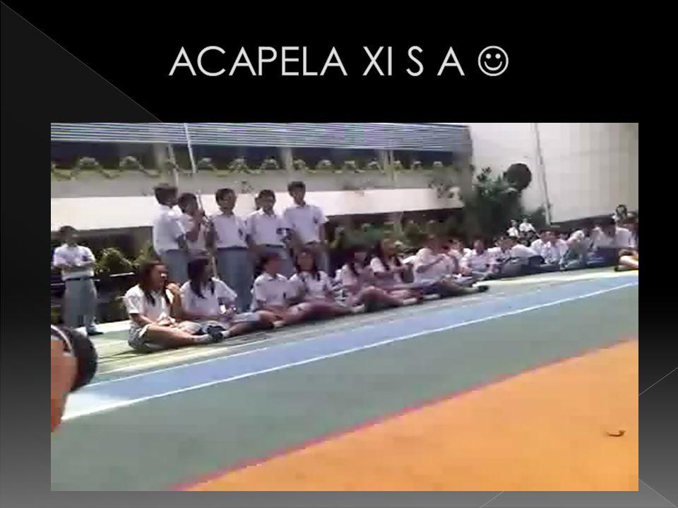 ACAPELA XI S A 