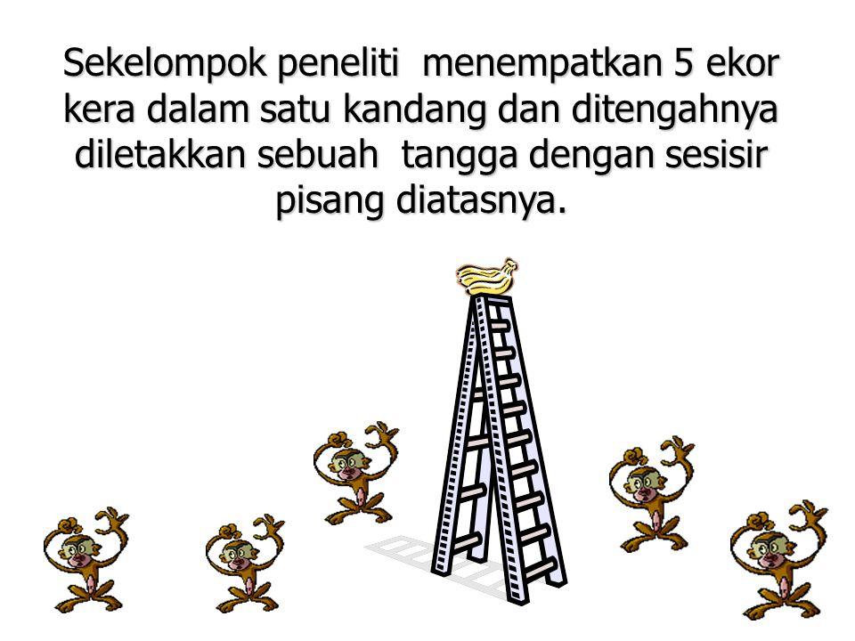 Sekelompok peneliti menempatkan 5 ekor kera dalam satu kandang dan ditengahnya diletakkan sebuah tangga dengan sesisir pisang diatasnya.