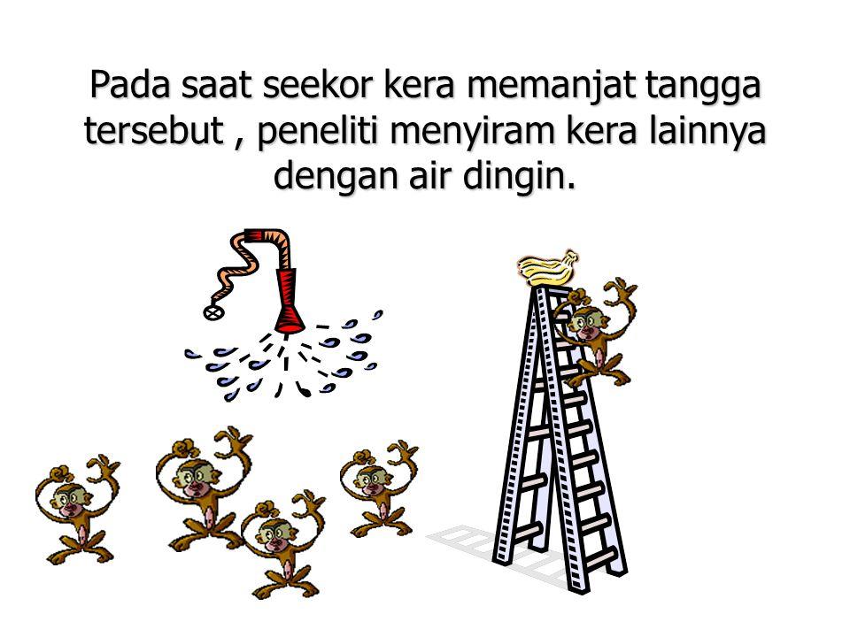 Pada saat seekor kera memanjat tangga tersebut , peneliti menyiram kera lainnya dengan air dingin.