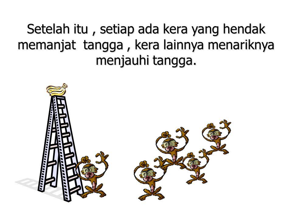 Setelah itu , setiap ada kera yang hendak memanjat tangga , kera lainnya menariknya menjauhi tangga.