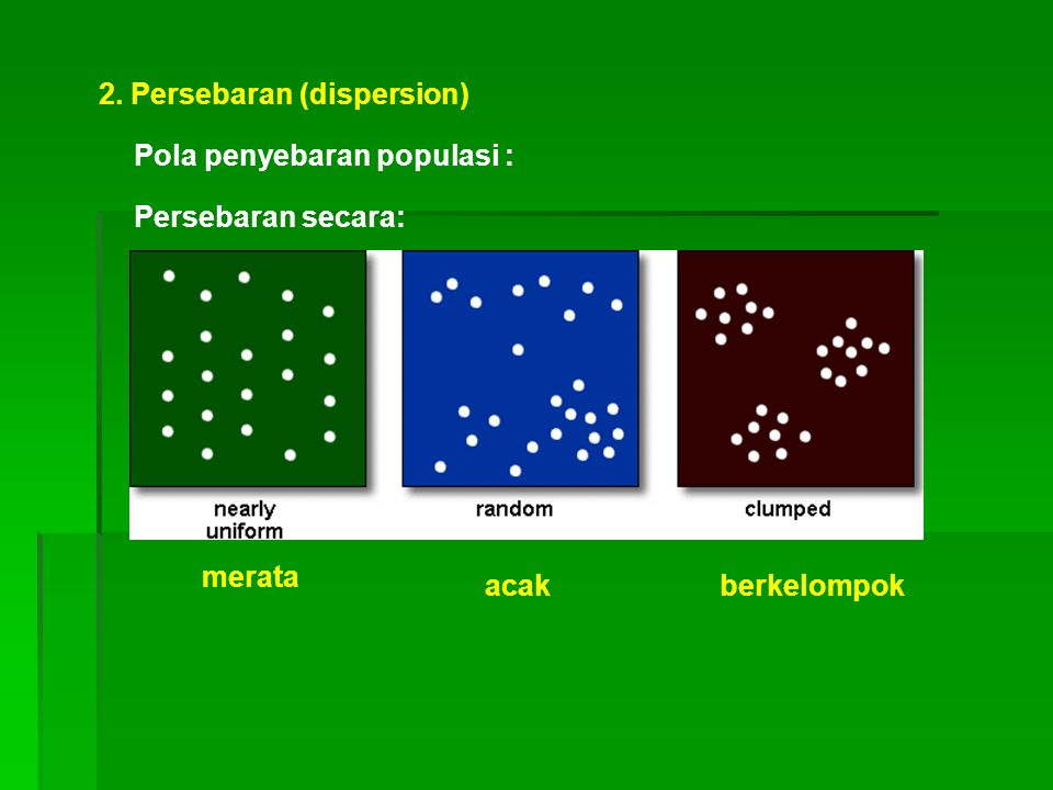 2. Persebaran (dispersion)